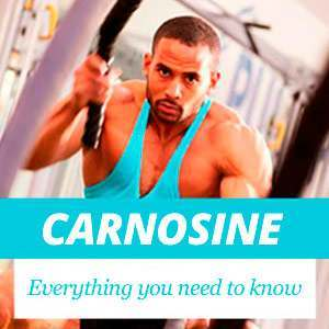 Everything about Carnosine