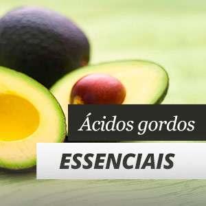 Os ácidos gordos essenciais