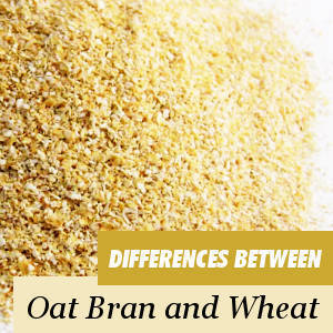Wheat bran and Oat bran