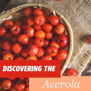 Acerola - Benefits and Properties