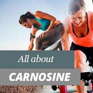 All about carnosine