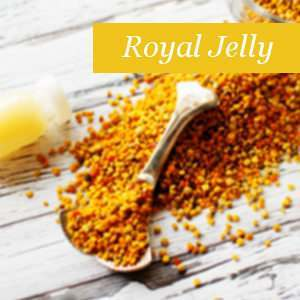Ingredient Royal Jelly