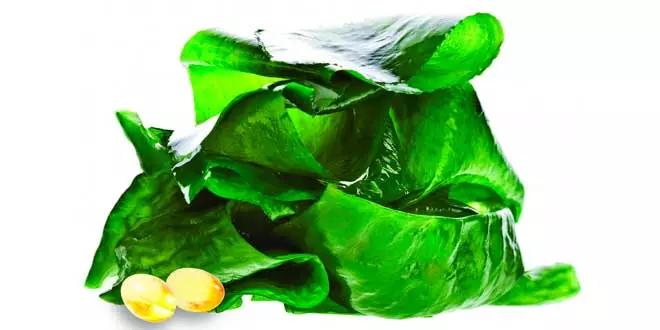 Oméga-3 en aliments pour végétaliens et végétariens