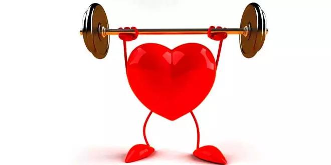 Oméga-3 et santé cardiovasculaire