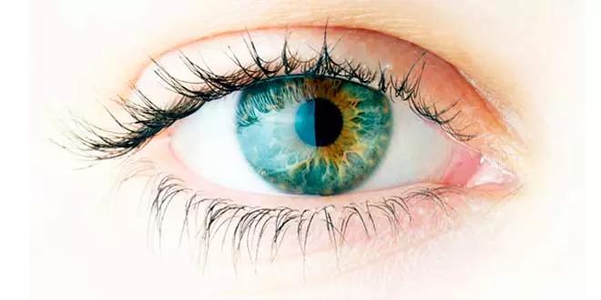 Santé oculaire et Oméga-3