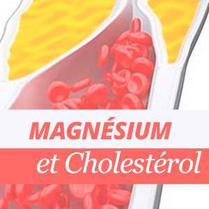 Magnésium et cholestérol