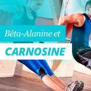 Bêta-Alanine et Carnosine