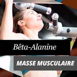 Bêta-Alanine et masse musculaire