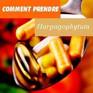 Comment prendre de l'harpagophytum