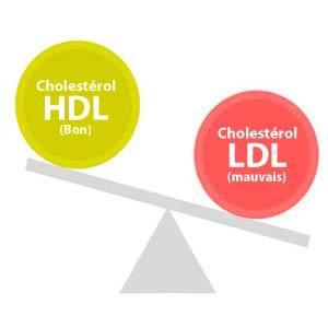 Équilibrer les niveaux de cholestérol dans le sang