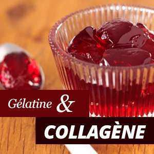 Gélatine et Collagène