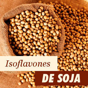 Ingrédient: Isoflavones de Soja
