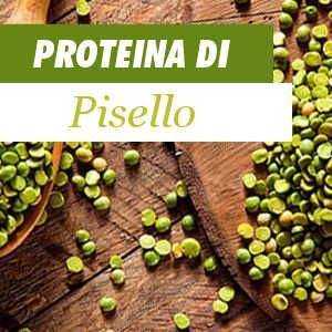 Tutto sulla proteina del pisello