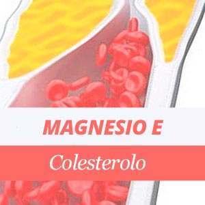 Magnesio e il colesterolo