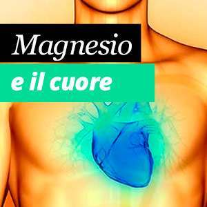 Magnesio e il cuore