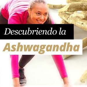 Discovering the Ashwagandha