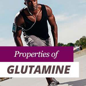 Everything about Glutamine