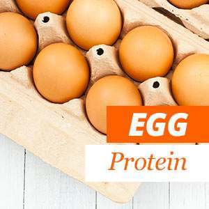 Benefits of Egg Protein