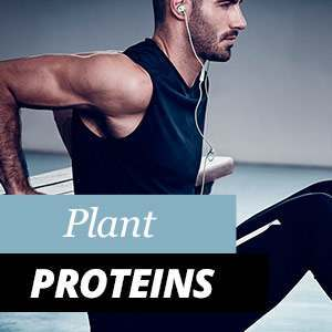 All about Plant Proteins
