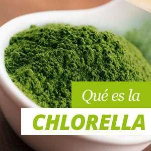 Todo sobre el alga chlorella