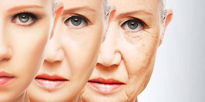 Coenzima Q10 Anti-envelhecimento