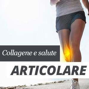 collagene e articolazioni