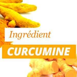 Todo sobre la curcumina