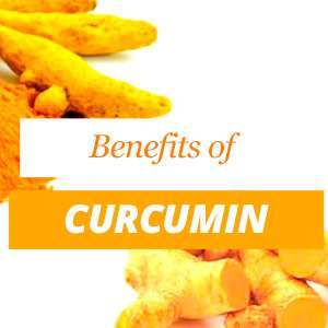 Everything about Curcumin