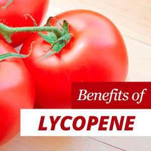 Everything about Lycopene