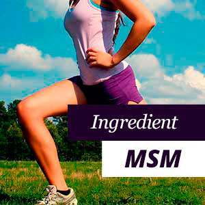 MSM for joints