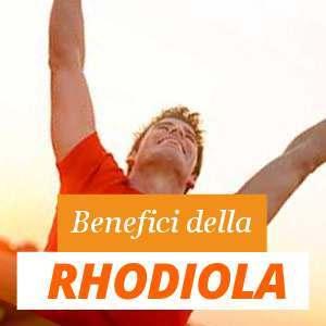 Tutto sulla Rhodiola
