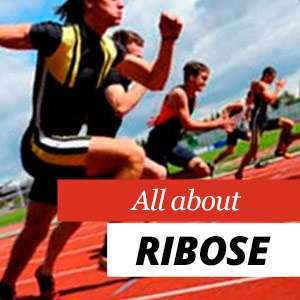 All about Ribose