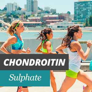 Chondroitin for joints