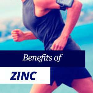 Everything about Zinc