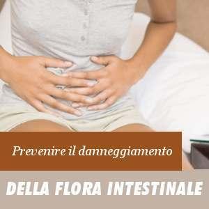 La flora intestinale