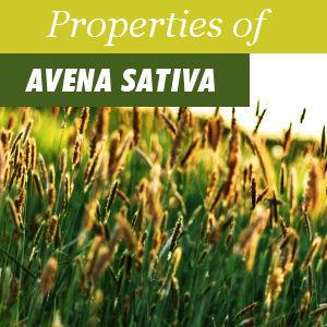 Propiedades de la Avena Sativa