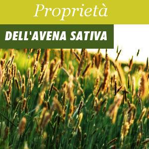 Proprietà dell'Avena Sativa