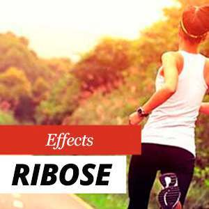Ribose and Energy