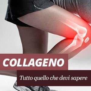 Supplementi di collagene