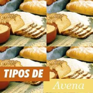 Diferentes tipos de Avena